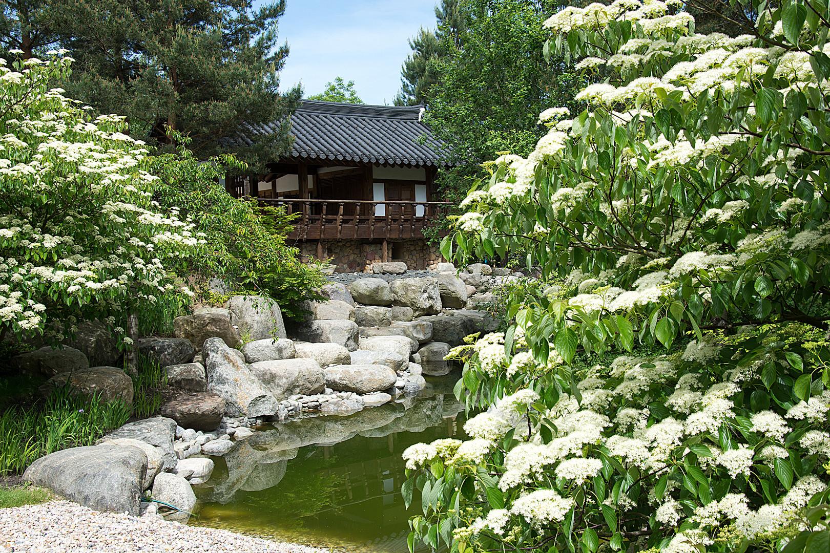 Im koreanischen Garten