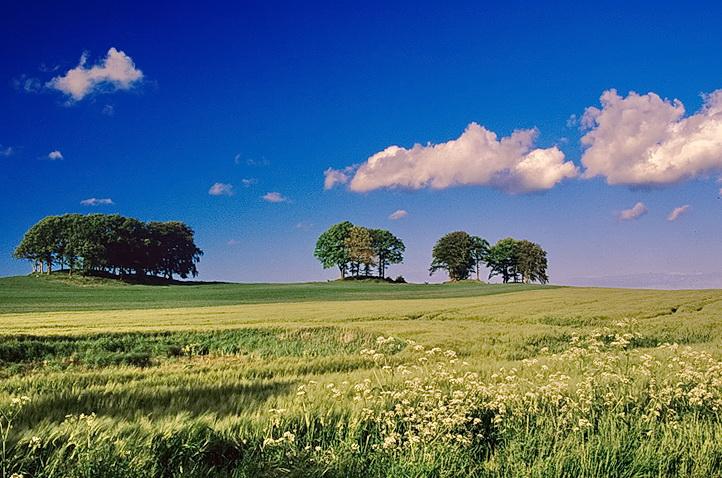 Im land der Hügelgräber...