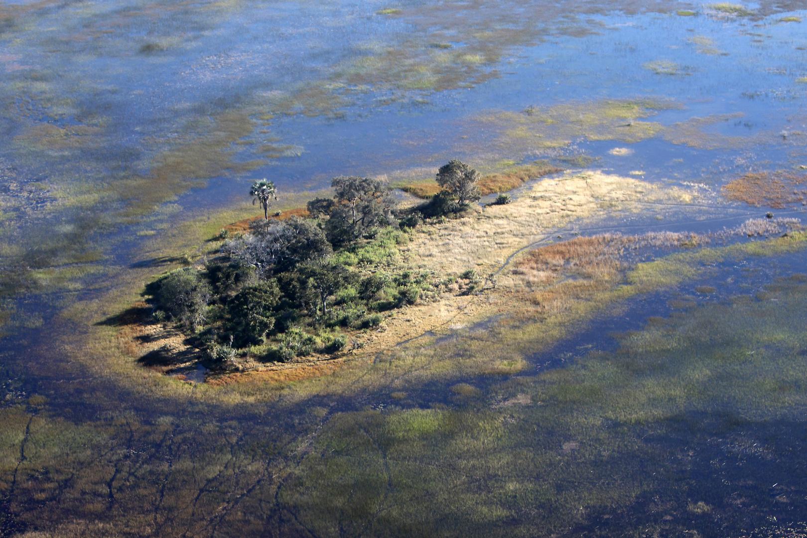 Im letzten Juli war viel Wasser im Delta.
