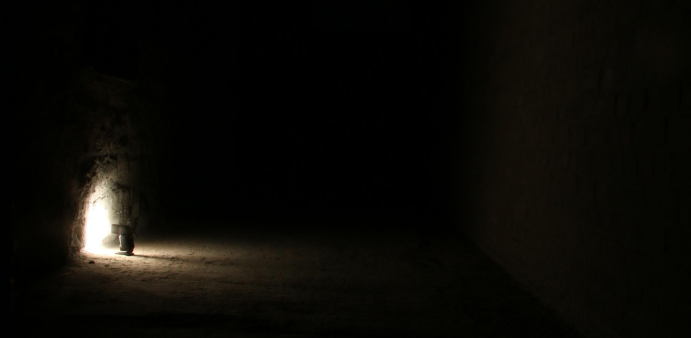 im Licht stehen