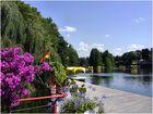 Im Luisenpark / Mannheim