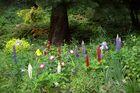 im Märchenwald im Blühenden Barock in Ludwigsburg