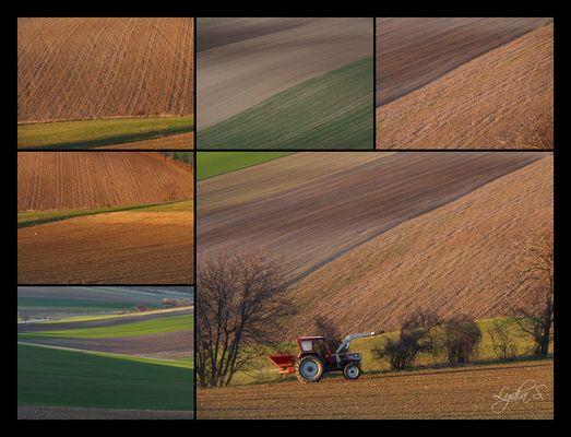 ...im Märzen der Bauer...