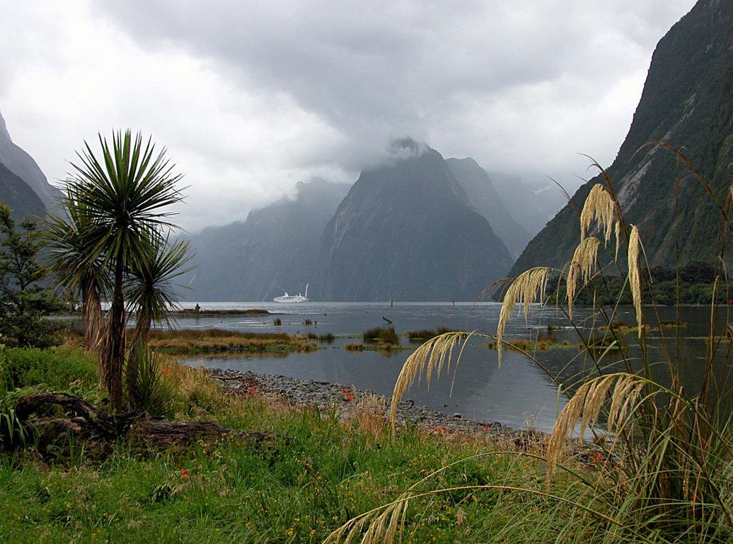 Im Milford Sound / Neuseeland