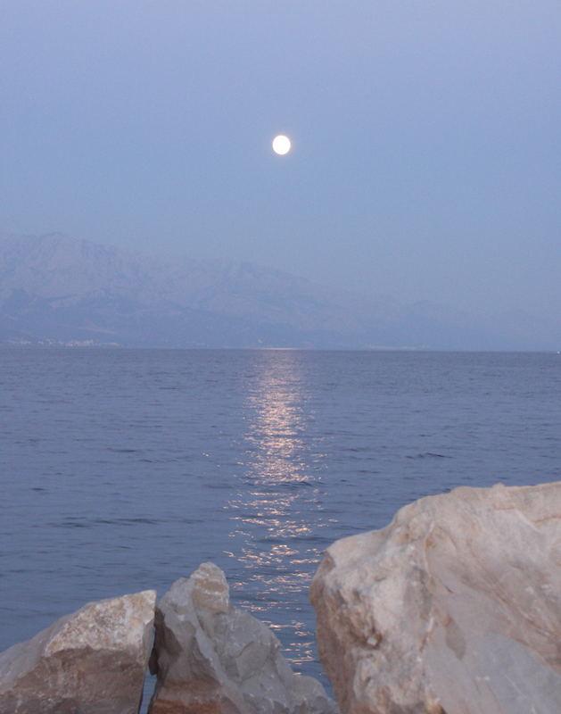 Im Mondlicht