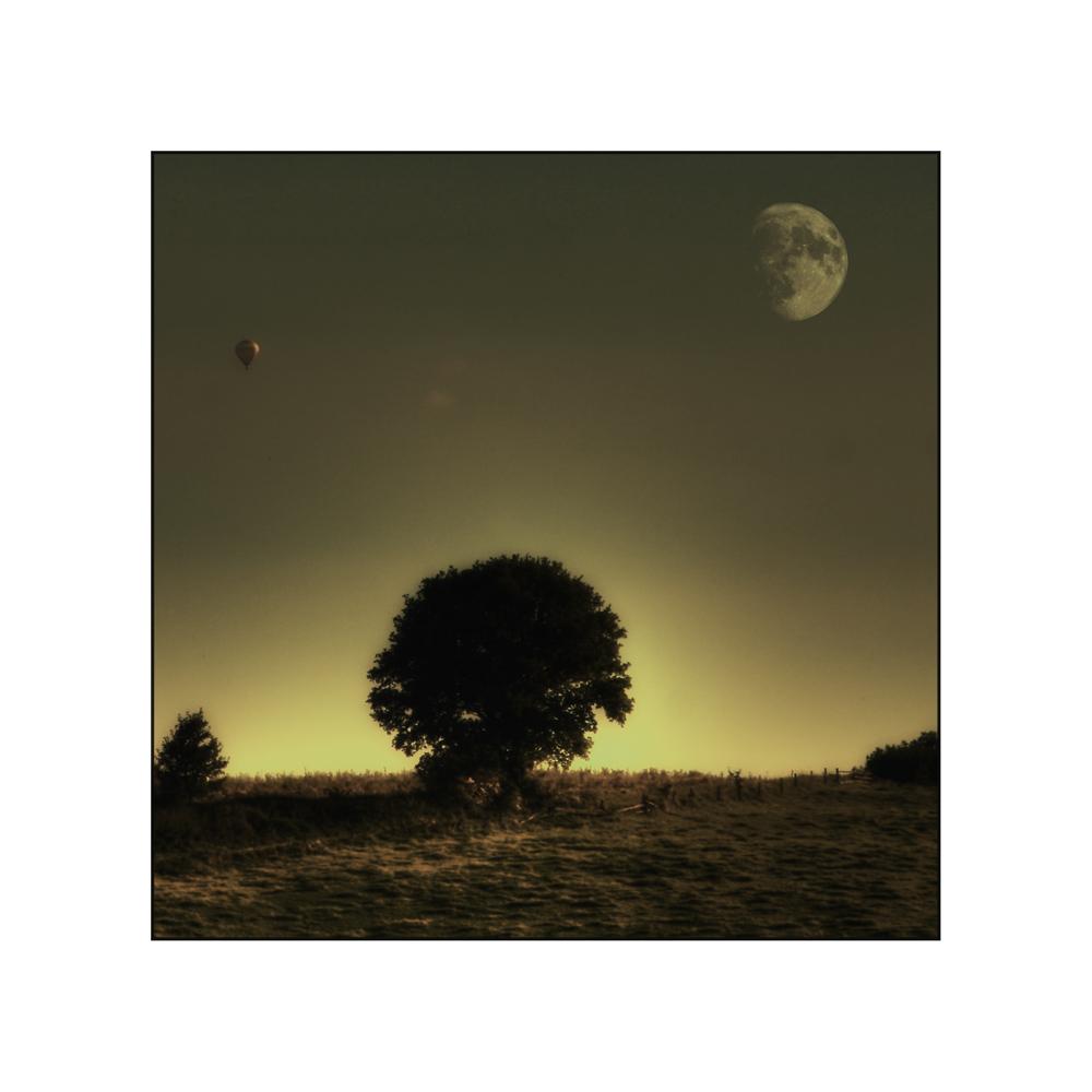 ...im Mondschein...
