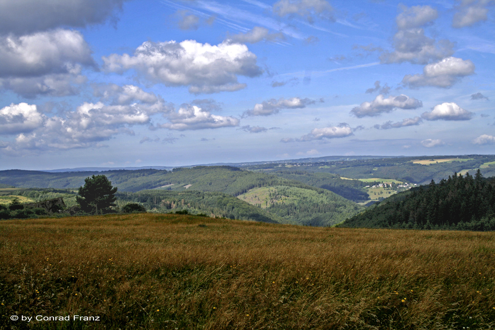 Im Nationalpark Eifel