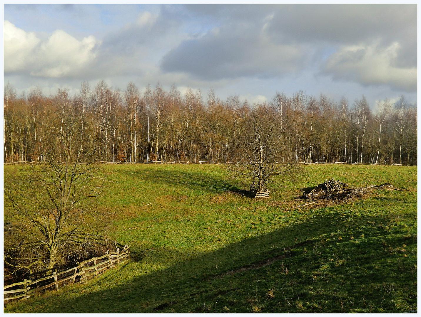 Im Neandertal Januar 2012