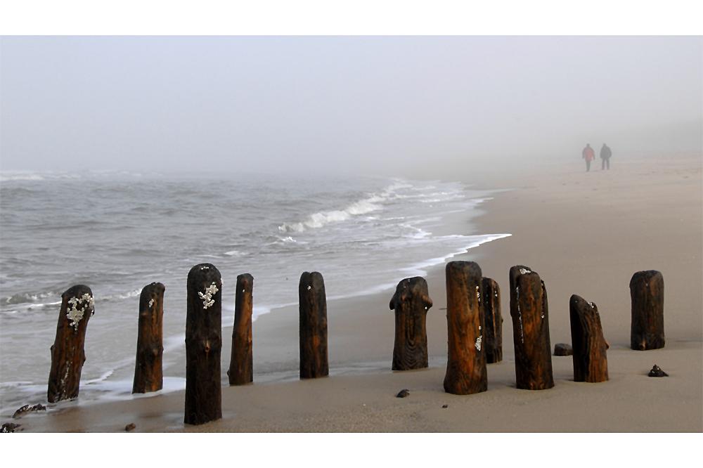 ...im Nebel ....