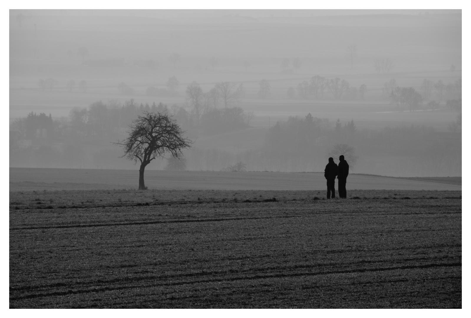 Im Nebel.....