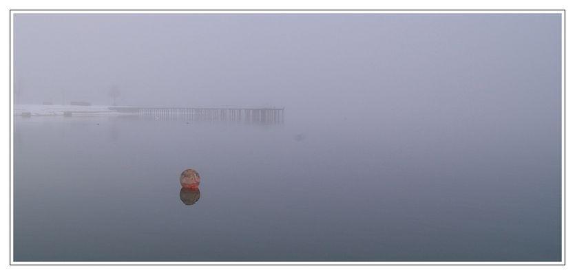 ...im Nebel