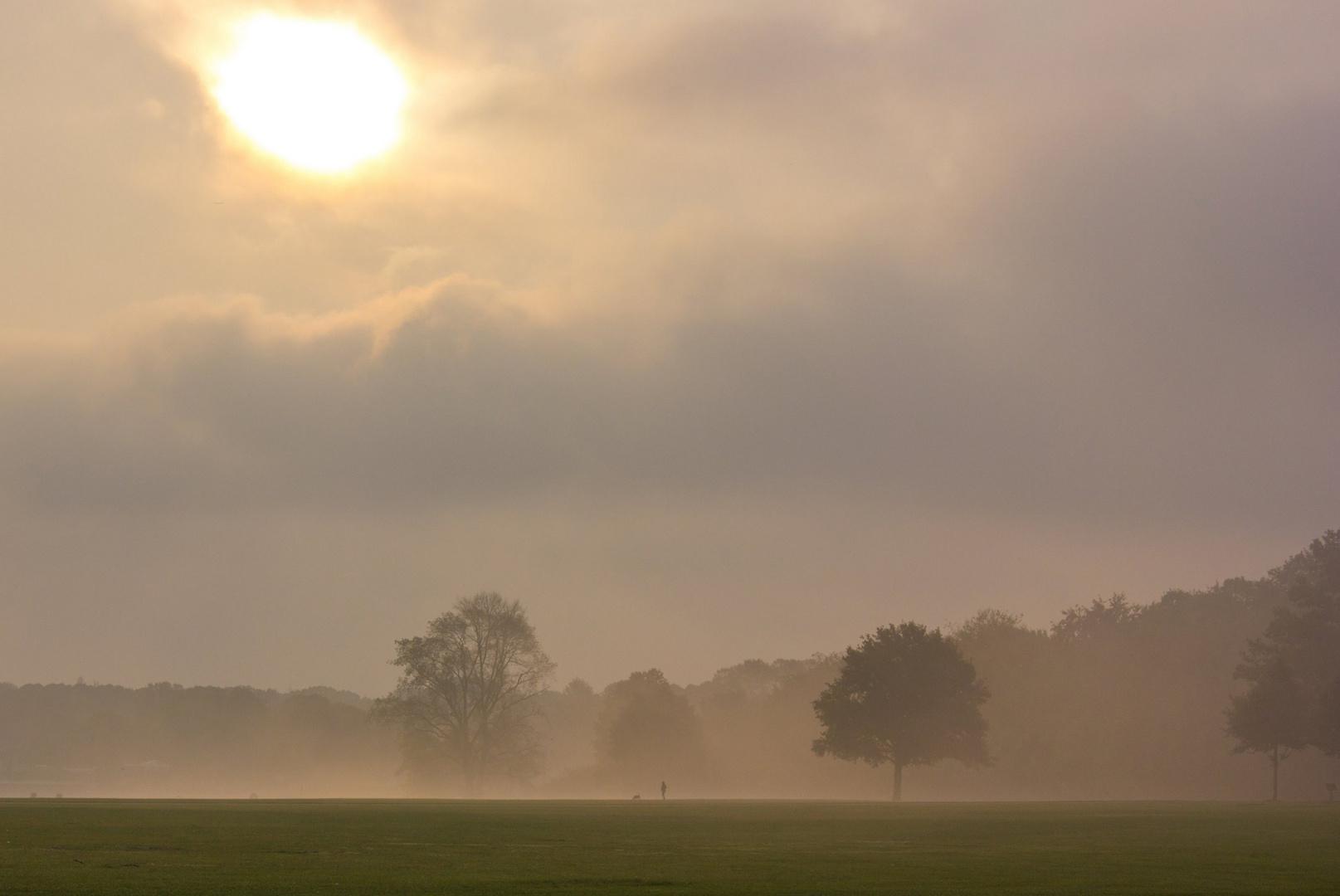 Im Nebel - Der Hamburger Stadtpark