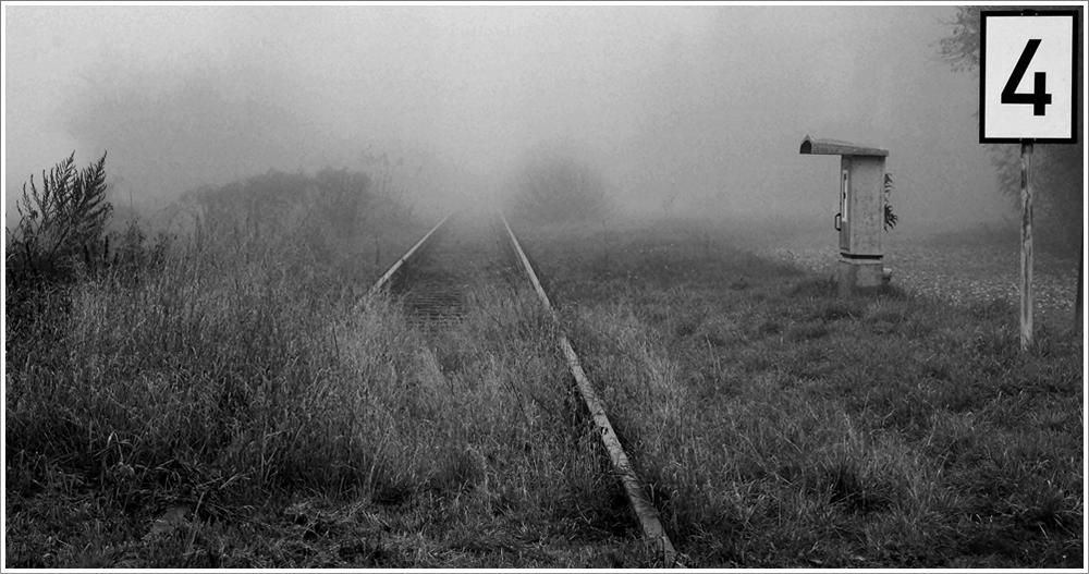 Im Nebel der Ungewißheit aber muß wenigstens eins gewiß sein – der eigene Entschluß.