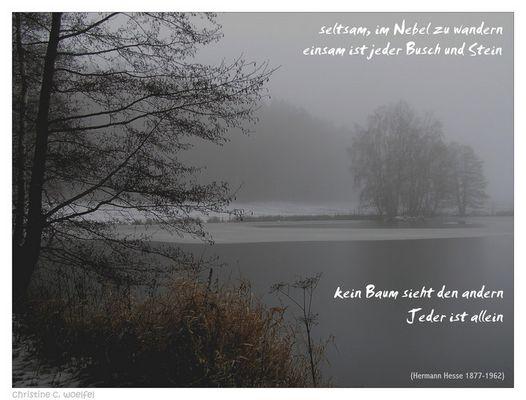 Im Nebel ...