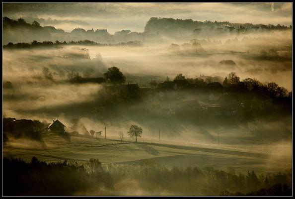 ~~ im Nebel ~~