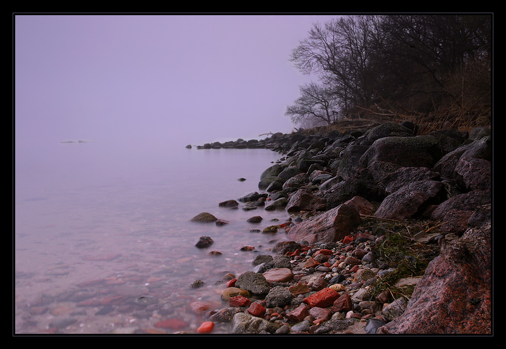 im Nebel N°11