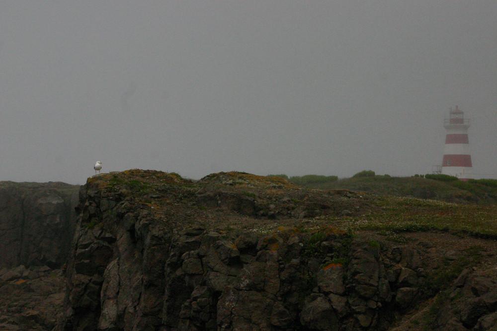 Im Nebel, Nova Scotia 2008