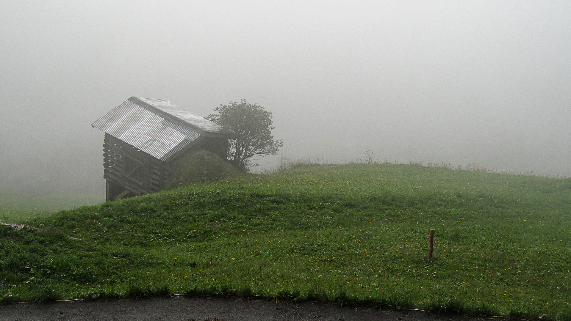 Im Nebel verschwindend