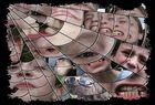 Im Netz der Emotionen