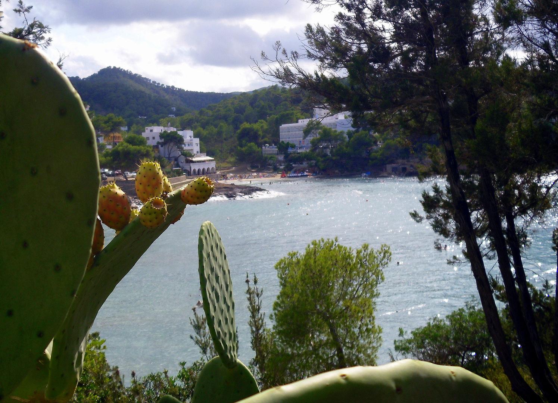 Im Norden von Ibiza - Portinatx 8