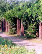 Im Park 2