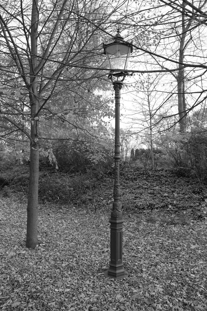Im Park in Döbelin