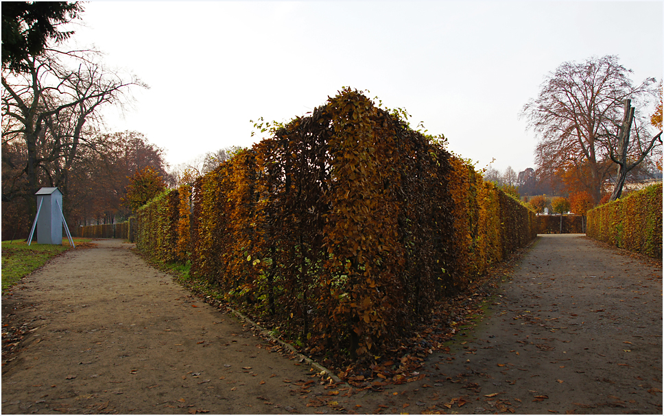 Im Park von Sanssouci, 06.11.11 – 02
