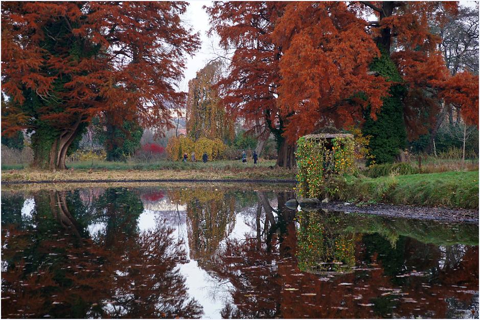 Im Park von Sanssouci, 06.11.11 – 06