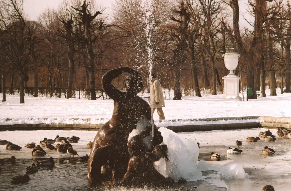 Im Park von Schönbrunn