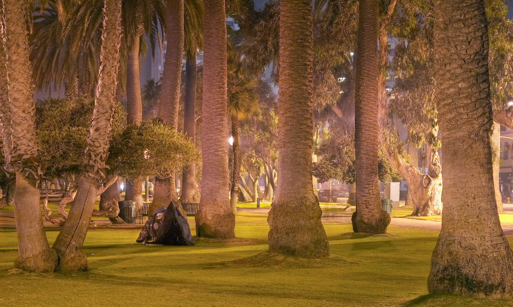 Im Park zu Santa Monica