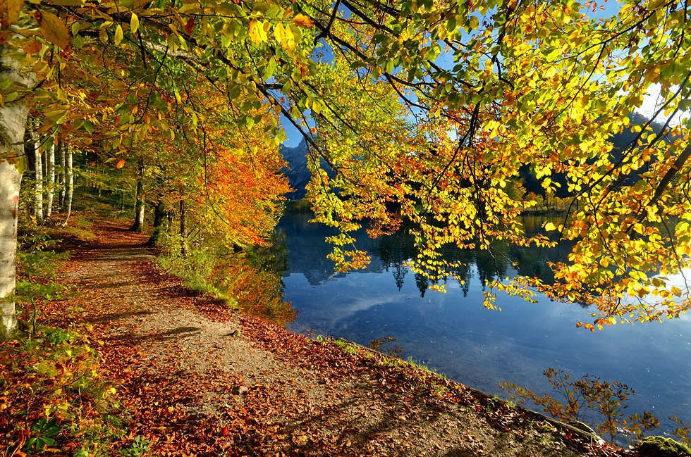 Im Rausch der Herbstfarben