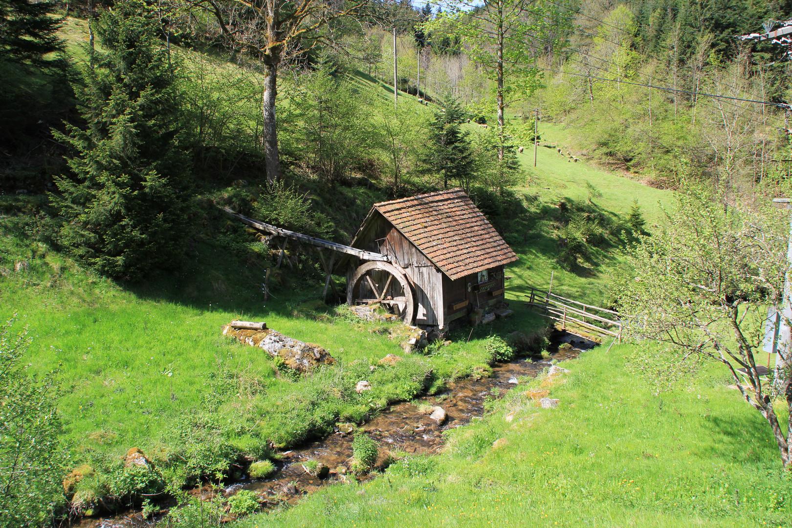 im Reichenbach Tal
