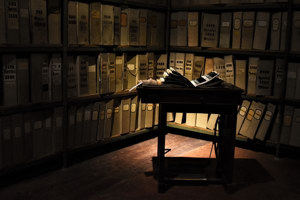 Im Saal der vergessenen Bücher