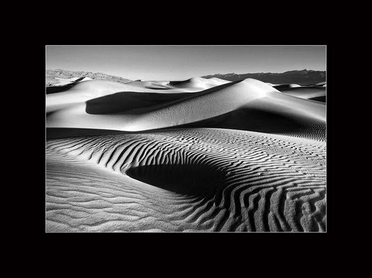 Im Sandmeer