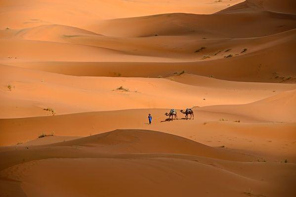 Im Sandmeer des Erg Chebbi