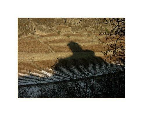 """""""Im Schatten…"""""""