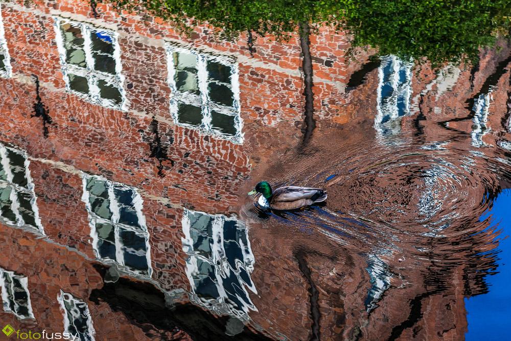 im Schlossgraben