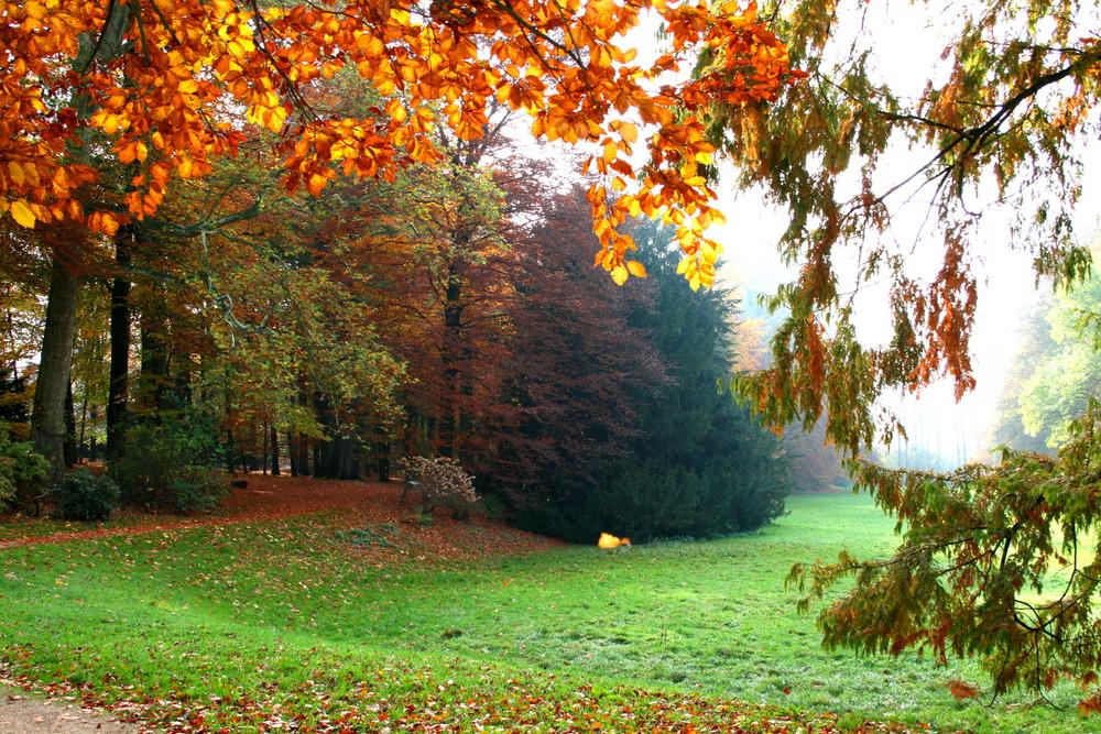 ....im Schlosspark....