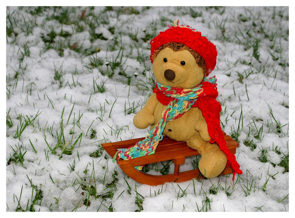 ... Im Schnee ...