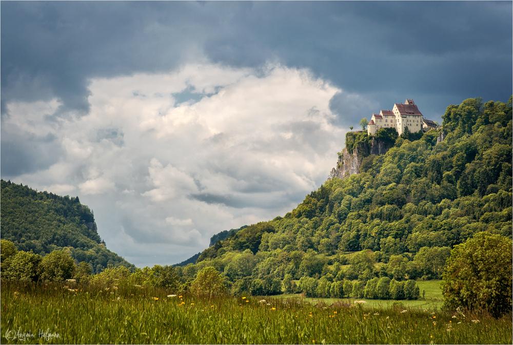 .. im schönen Donautal II