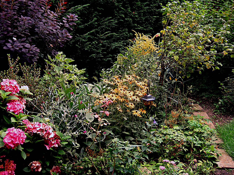 Im schönen Garten einer Bekannten