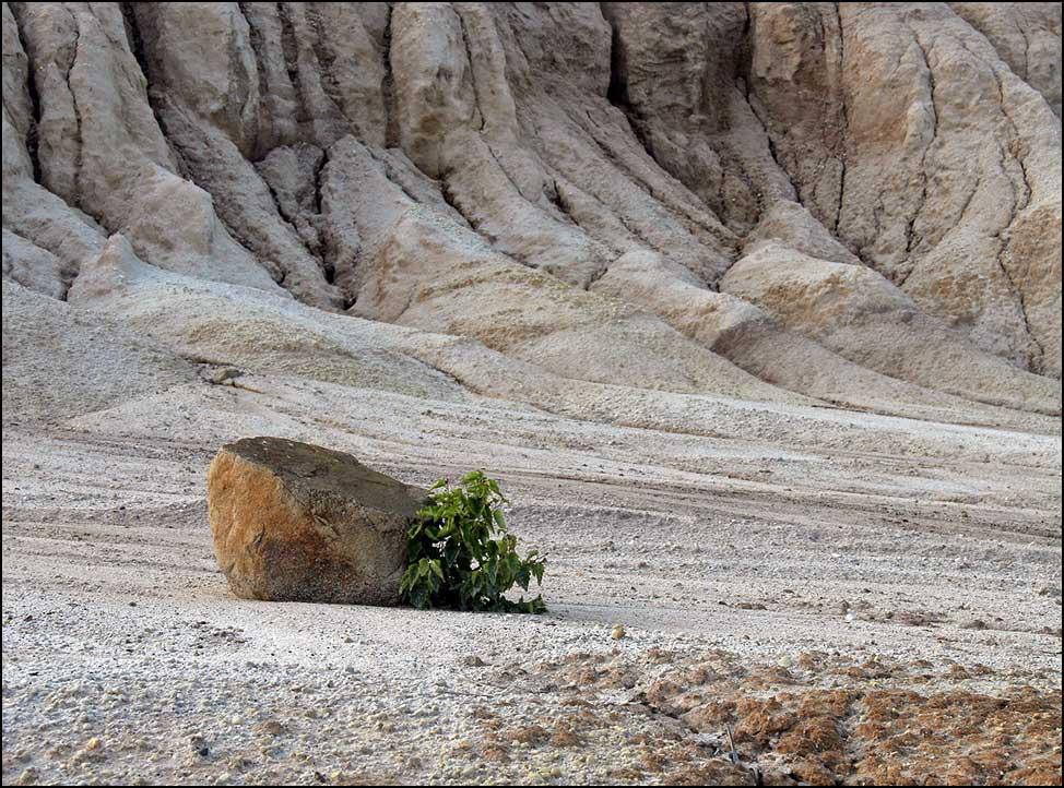 Im Schutz des Steines...
