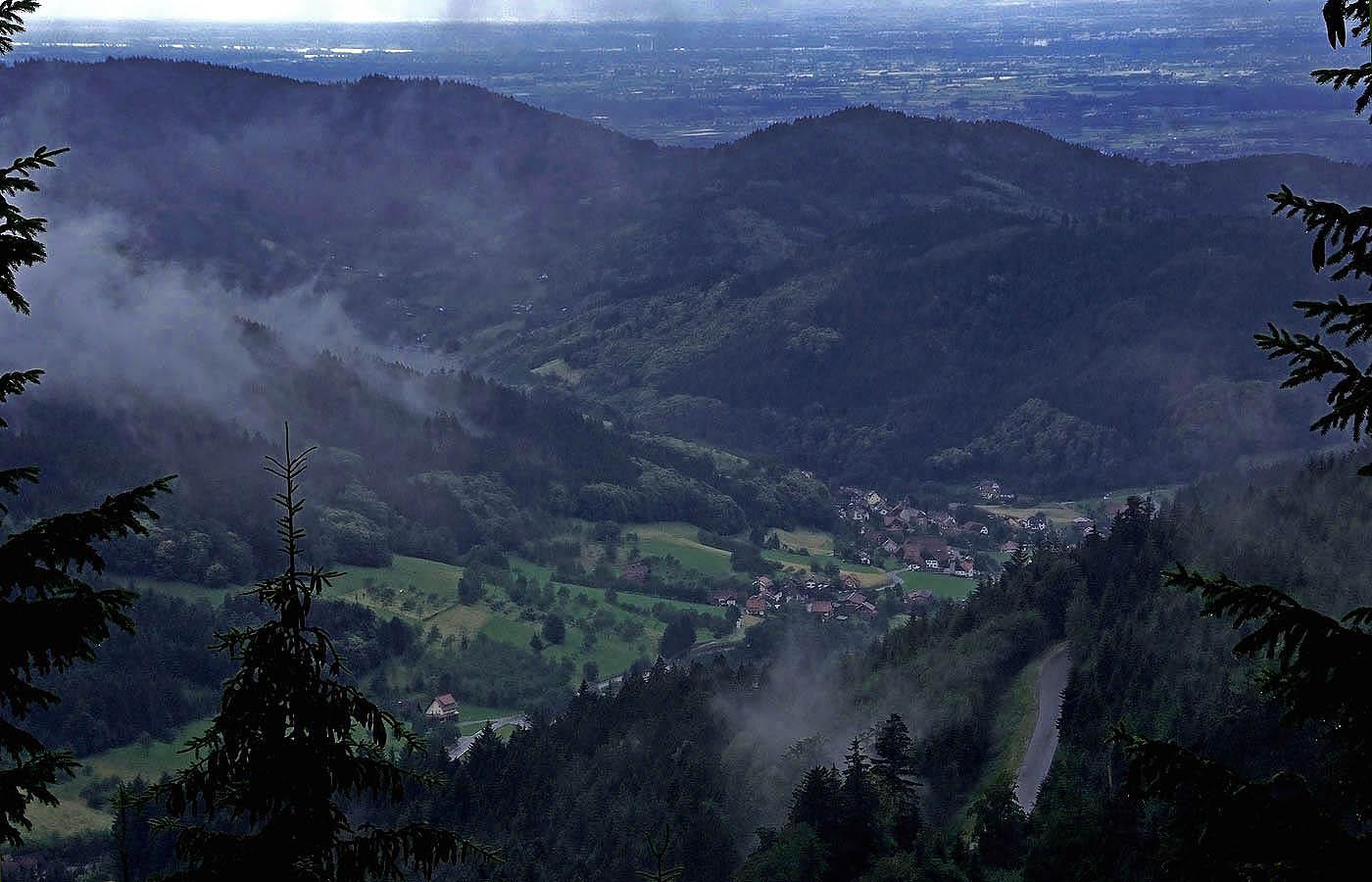 Im Schwarzwald ...