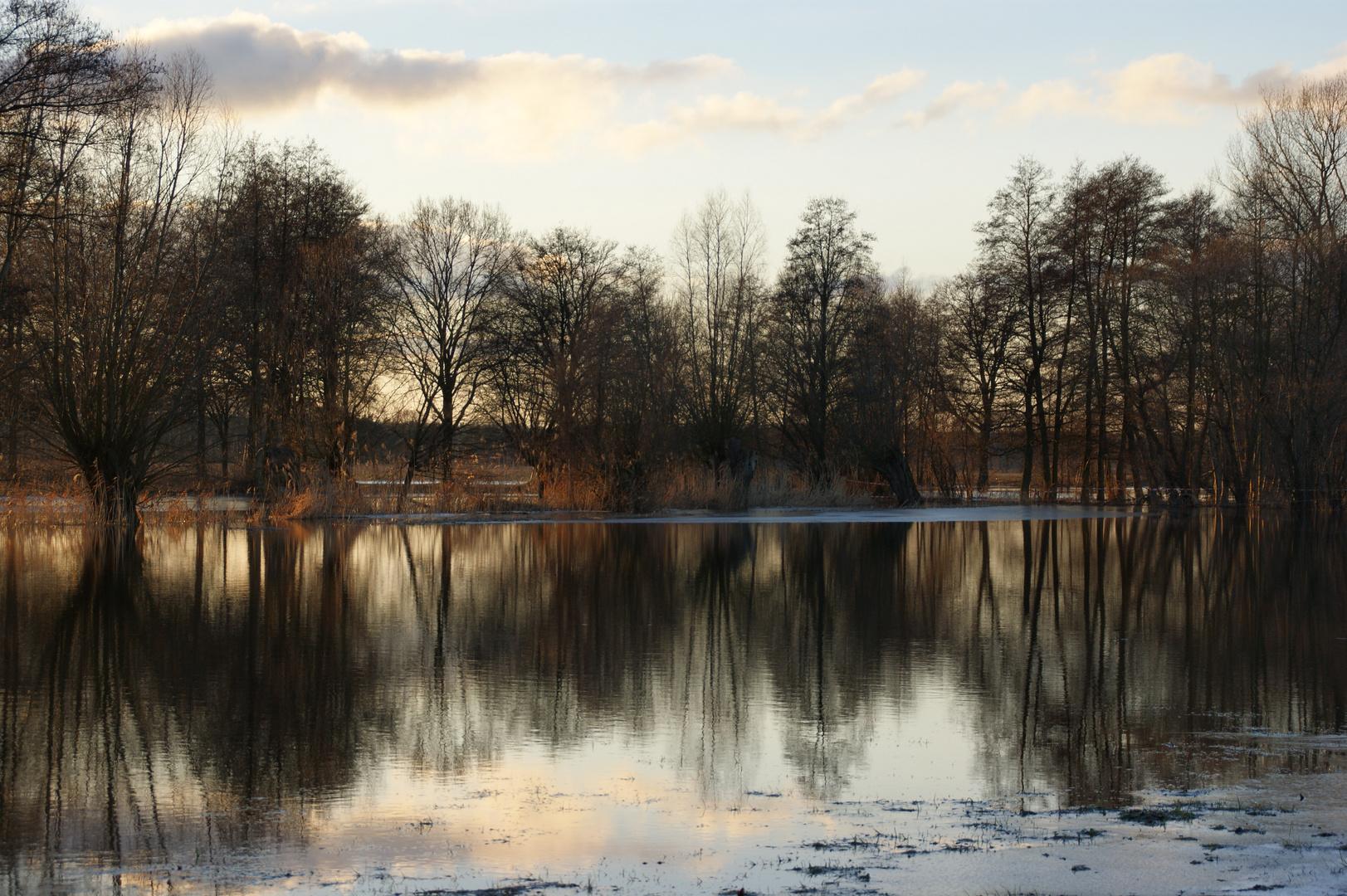 im Spiegel des Hochwassers
