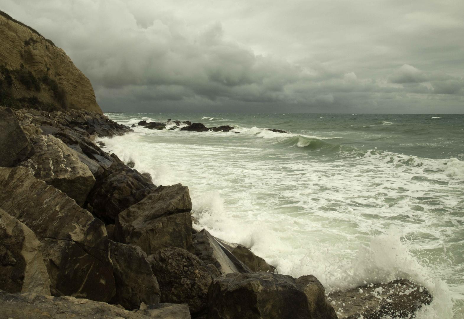 Im Sturm.....