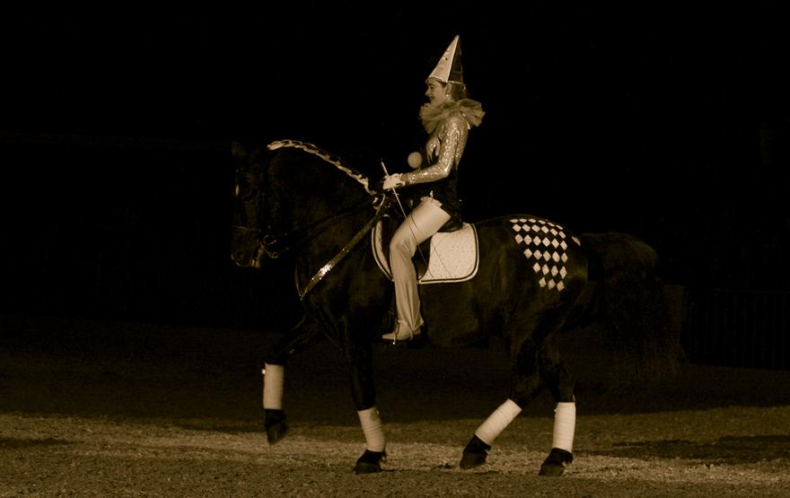 Im Takt der Pferde #7