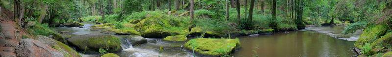 Im Tal der Waldnaab