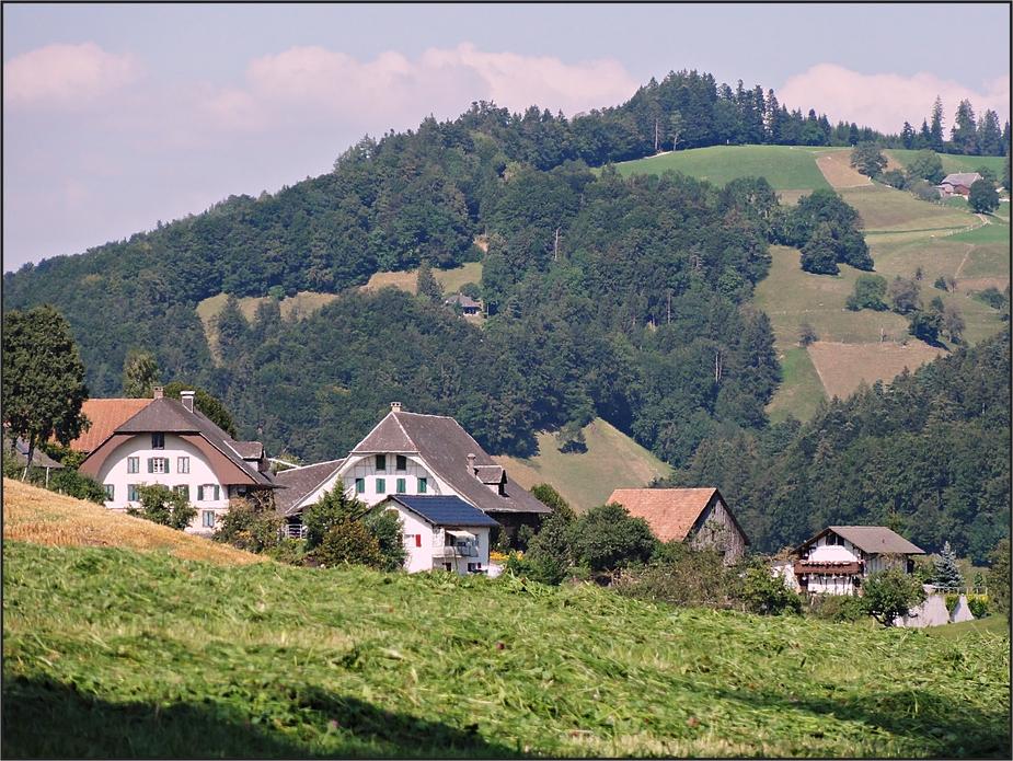 Im Tal und weiter oben
