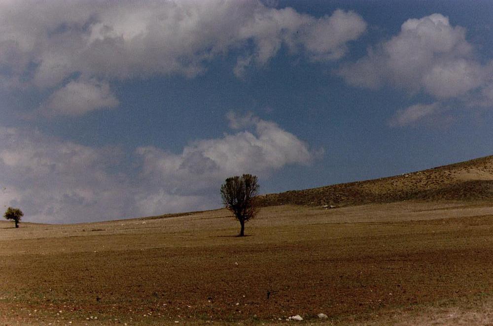 im Taurusgebirge2