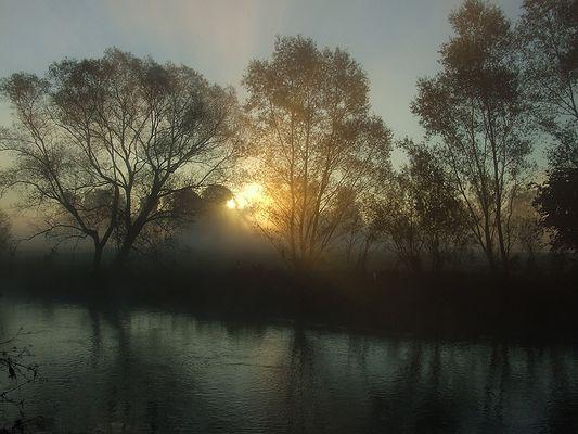 Im Urwald geht die Sonne auf